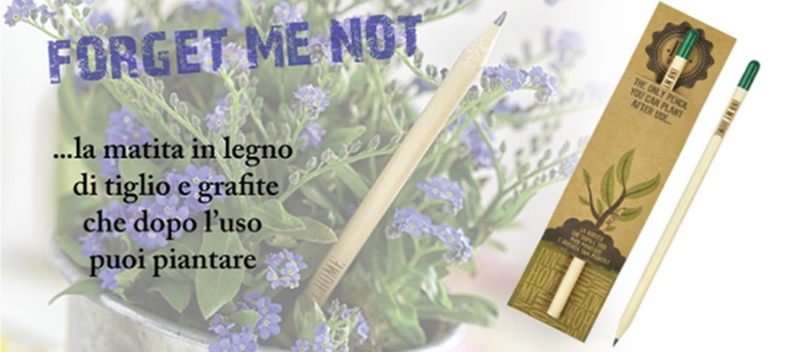 NOVITA' 2018 - FORGET ME NOT!